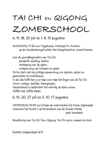 tekst Zomerschool WEBSITE FACEBOOK
