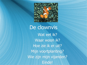 De clownvis - Bloggen.be