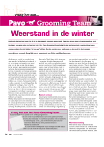 Weerstand in de winter