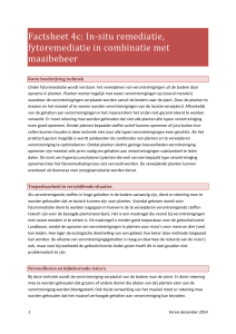 Factsheet 4c: In-situ remediatie, fytoremediatie in