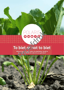 To biet or not to biet