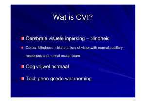 Wat is CVI?