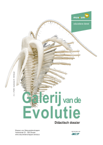 Didactisch dossier - Royal Belgian Institute of Natural Sciences