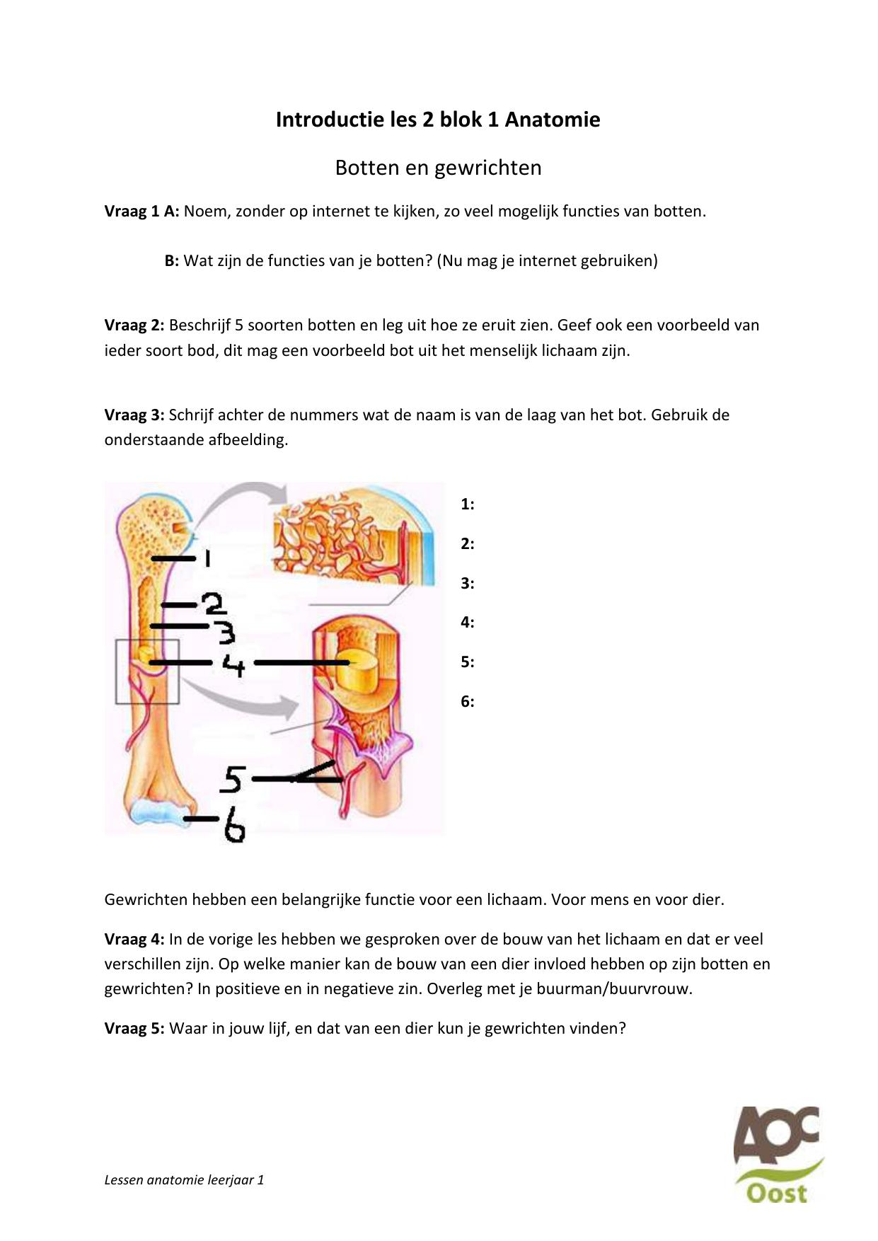 Onwijs functie botten FE-73
