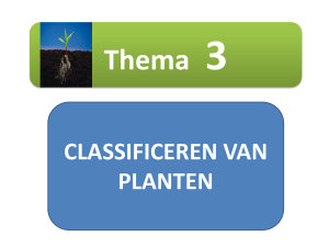 CLASSIFICEREN VAN PLANTEN Thema 3 1