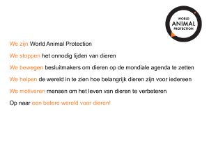 World Animal Protection PowerPoint Presentation