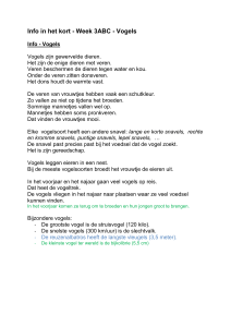 Info in het kort - Week 3ABC - Vogels - Alles-in