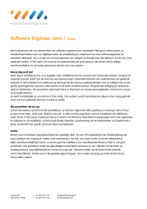 Software Engineer Java / Delphi