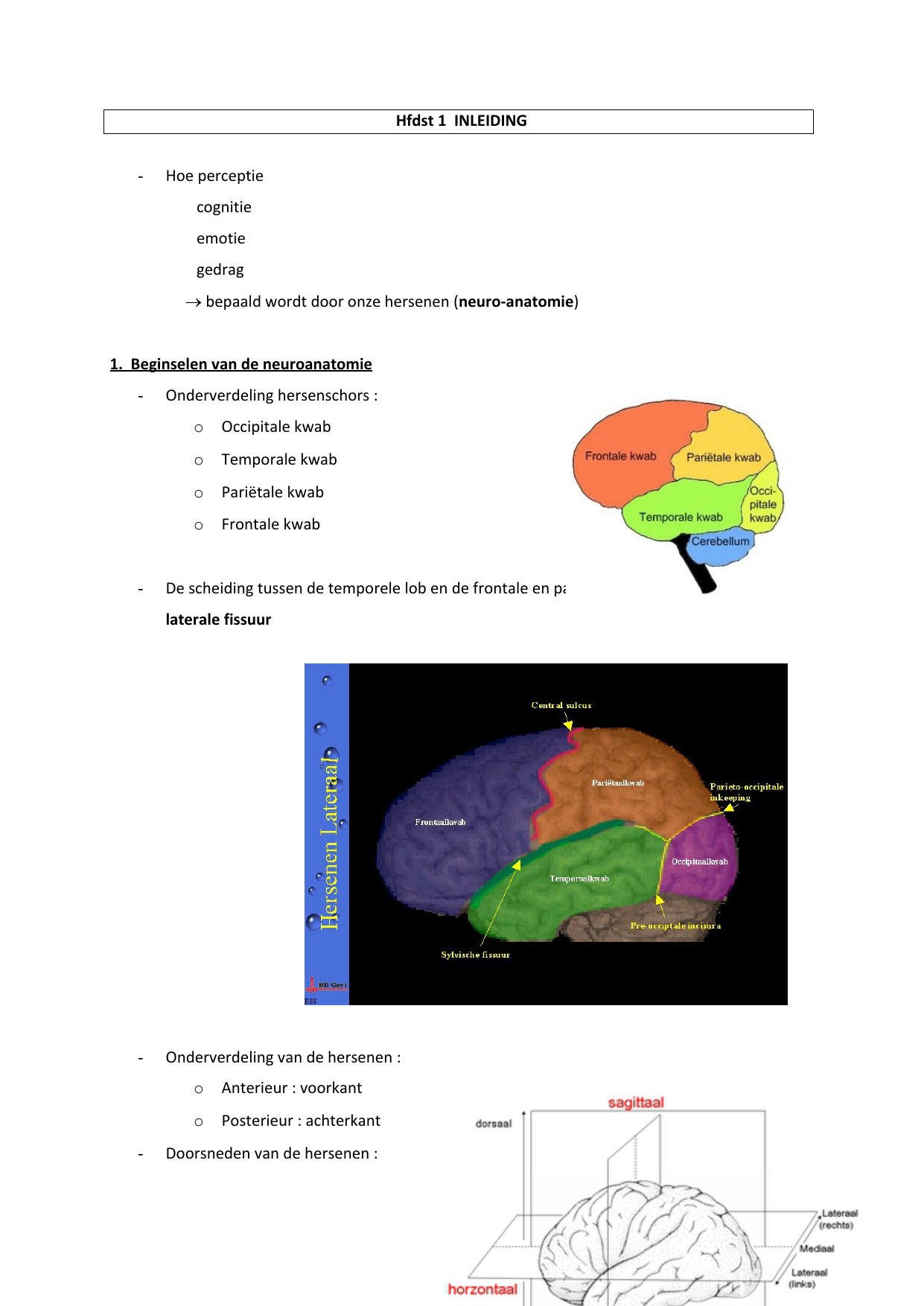 Hoe perceptie cognitie emotie gedrag → bepaald wordt door onze