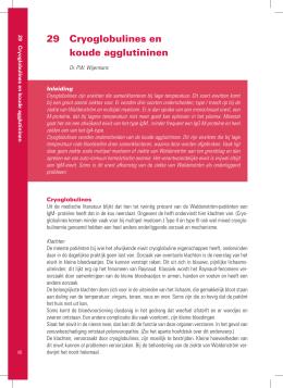 medische publicaties dokter lokhorst