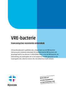 VRE-bacterie