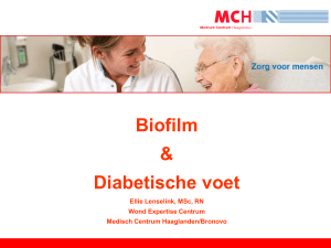 15-06-19 WCS Hands On Biofilm en diabetische door E.Lenselink