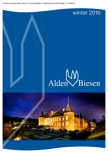 2016 winter - Alden Biesen