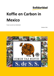 Koffie en Carbon in Mexico - Hesselink Koffie Foundation