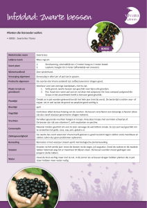 P2428_factsheet fruit plants.indd