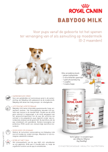 babydog milk - Royal Canin