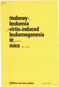 Moloney leukemia virus-induced leukemogenesis in mice