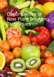 Opportunities of New Plant Breeding Techniques