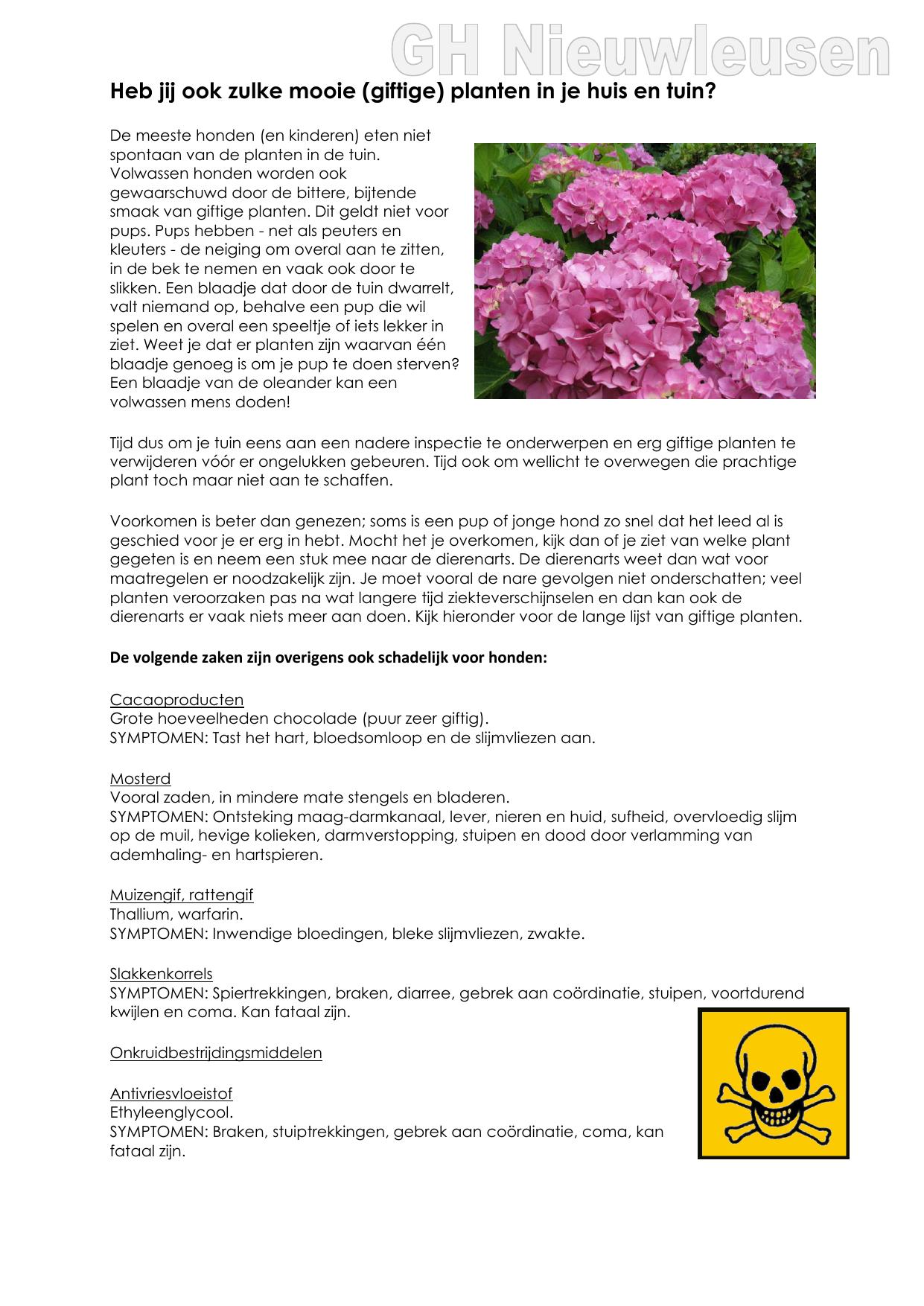 kamperfoelie giftig voor honden