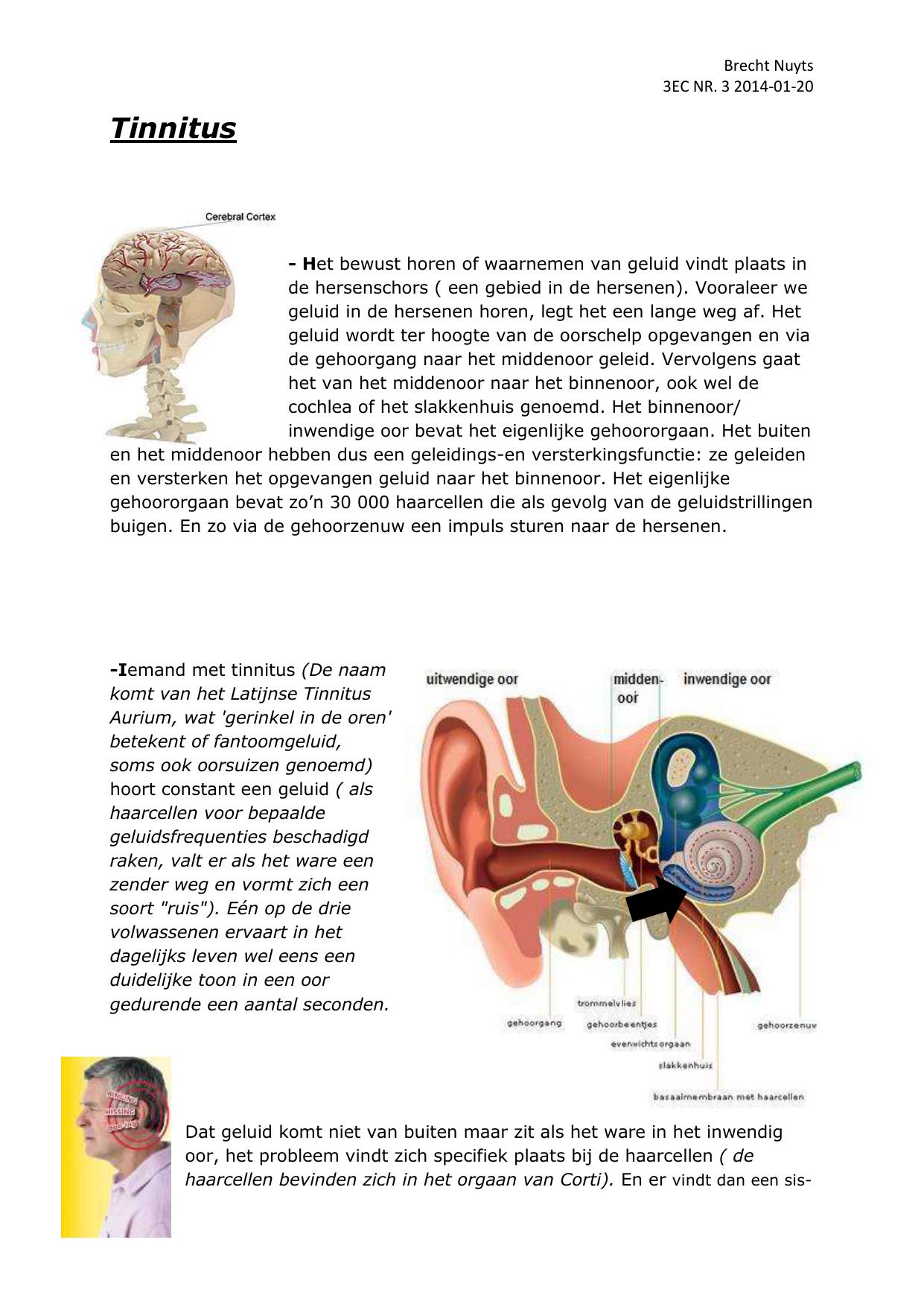 geluid in oor