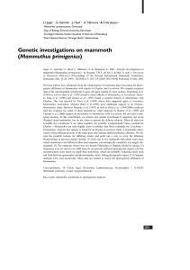 Genetic investigations on mammoth