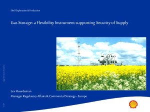 a Flexibility Instrument supporting Security of Supply
