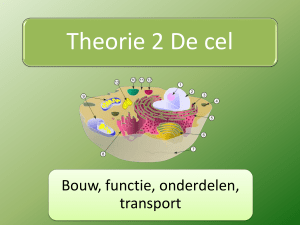 PPT1 Introductie Thema 2 Cellen