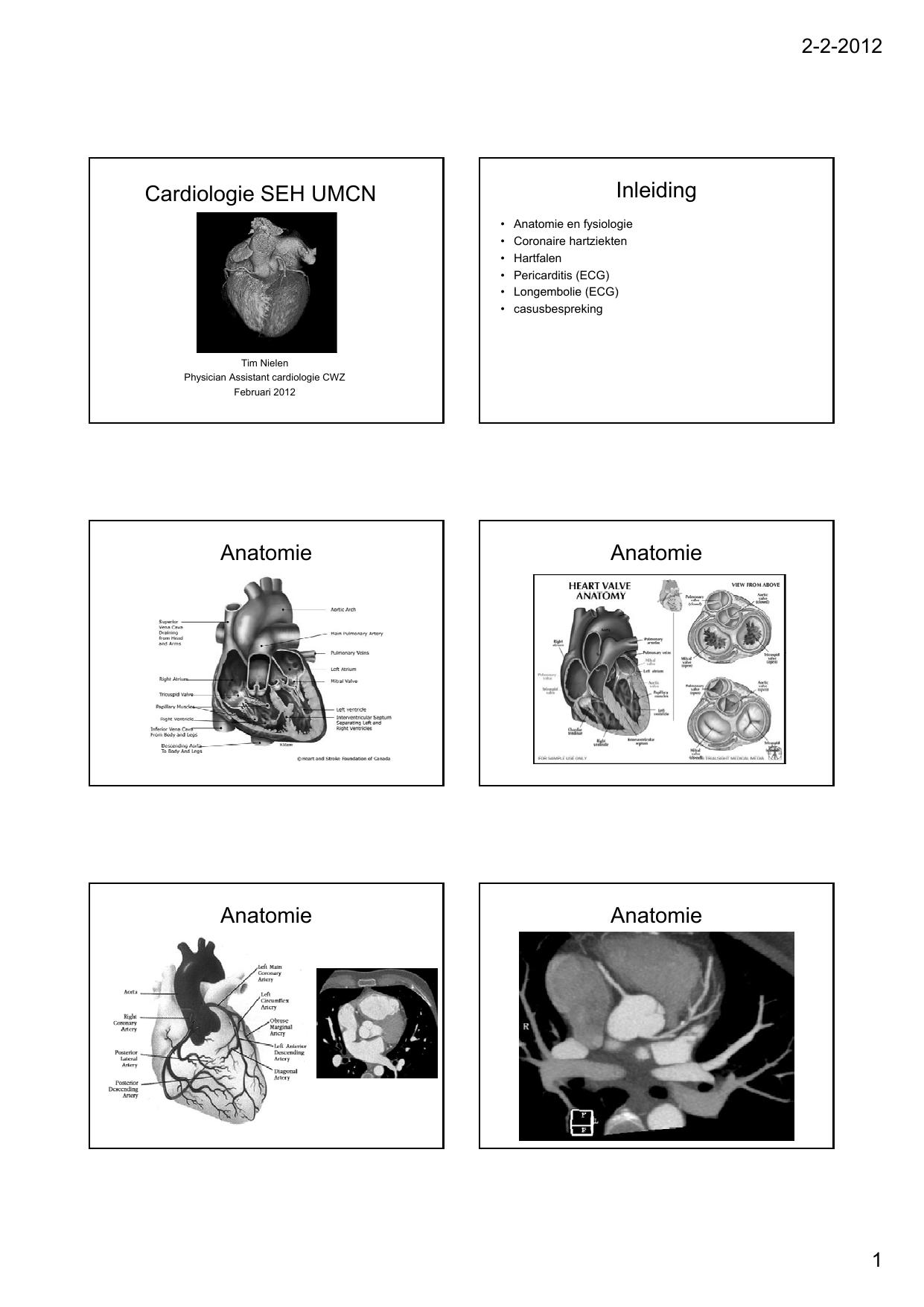 Cardiologie SEH UMCN Inleiding Anatomie Anatomie Anatomie