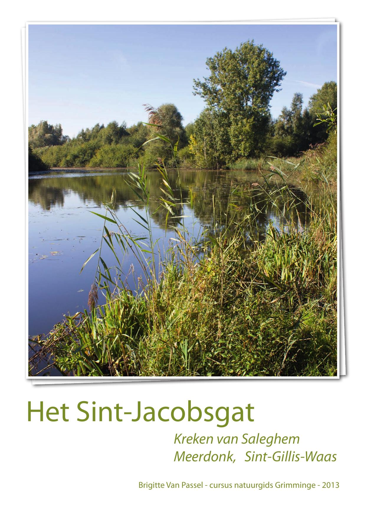 Leren Leverkleurige Bank.Het Sint Jacobsgat Natuurpunt Waasland