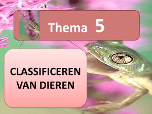 CLASSIFICEREN VAN DIEREN Thema 5