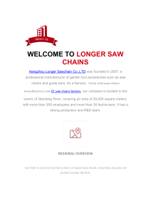 Hangzhou Longer Sawchain
